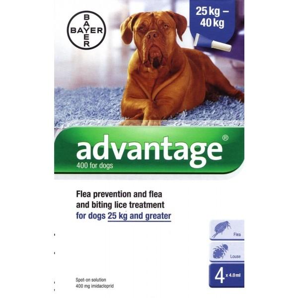 אדוונטג' אמפולות הדברה לכלבים גדולים