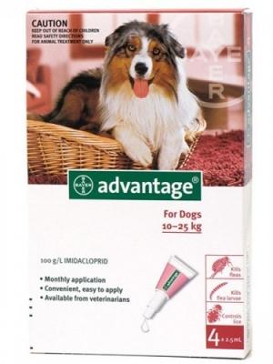 """אדוונטג' אמפולות הדברה לכלבים מעל 10 ק""""ג"""