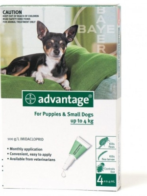 אדוונטג' אמפולות נגד פרעושים לכלבים קטנים