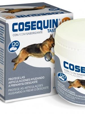 קוזקוין לטיפול במפרקים - תוספים לכלבים