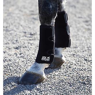 טיפול קרח לסוסים