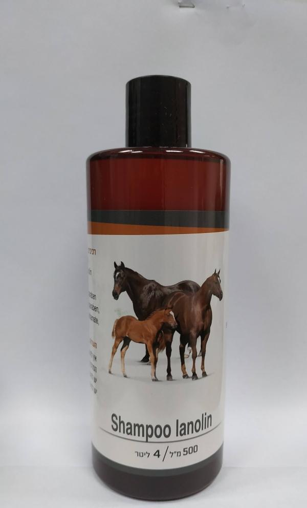 שמפו טיפוח לסוסים